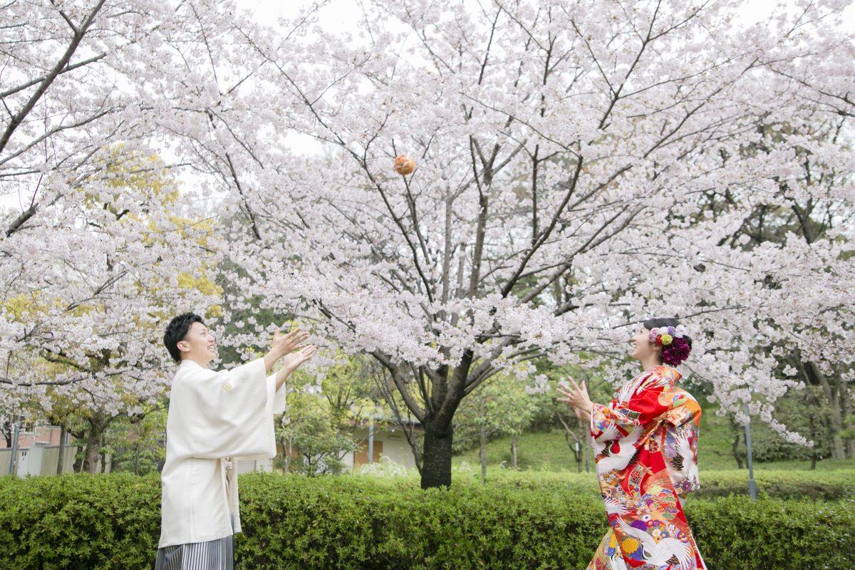 まだ間に合う♡お得な桜フォト